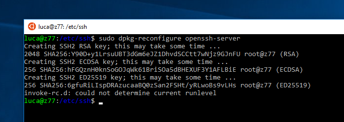 Using WSL from Token2Shell or Any Terminal Emulator via OpenSSH